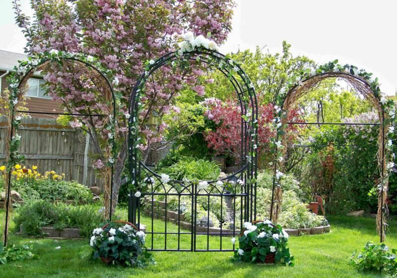 Арки в саду фото